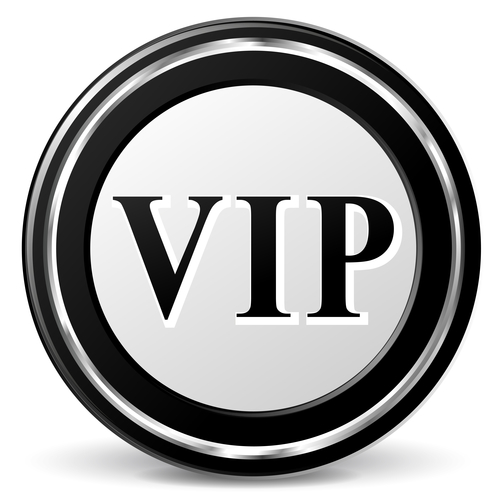 online business manager vip day
